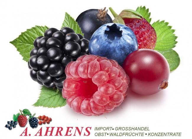 ahrens_import_grosshandel_home